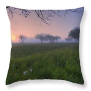 Wildflowers On A Foggy Pasture Throw Pillow
