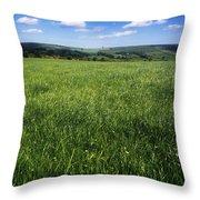 Wildflowers On A Landscape, Connemara Throw Pillow