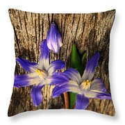 Wildflowers On Wood Throw Pillow