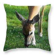 Wildlife Beauty Throw Pillow