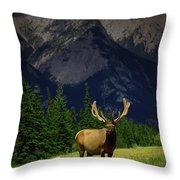 Wildlife In The Mountains Throw Pillow