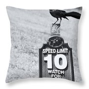 Wildlife Watching The Speed Limit Throw Pillow