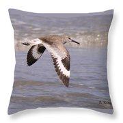 Willet In Flight Throw Pillow