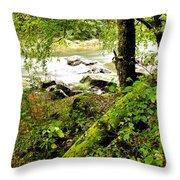 Williams River Throw Pillow by Thomas R Fletcher