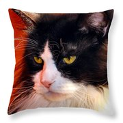 Willow Deep Thought Throw Pillow