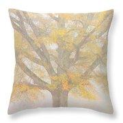 Willow Oak In Fog Throw Pillow by Bill Swindaman