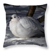 Willow Ptarmigan Throw Pillow