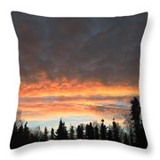 Willow Sunrise Throw Pillow