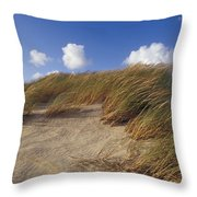 Wind Blown Grass Tussocks Precariously Throw Pillow