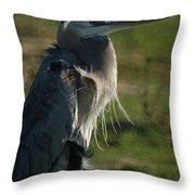 Wind Blown Great Blue Heron Throw Pillow
