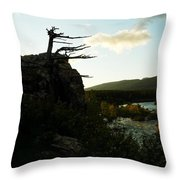 Wind Blown Tree At Many Glacier Throw Pillow