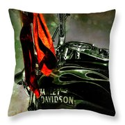 Wind In Your Hair Throw Pillow