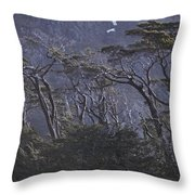 Wind-sculpted Southern Beech Forest Throw Pillow