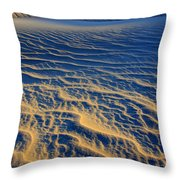 Wind Song Throw Pillow