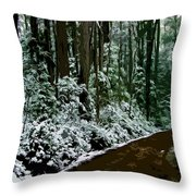 Winding Forest Trail In Winter Snow Throw Pillow