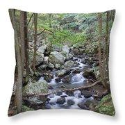 Winding Stream Throw Pillow