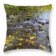 Winding Through The Fallen  Throw Pillow