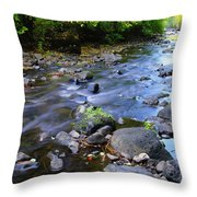 Winding Through The Gold Throw Pillow