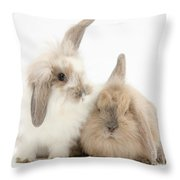 Windmill-eared Rabbits Throw Pillow