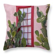 Window 2 Throw Pillow