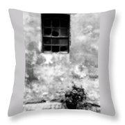 Window And Sidewalk Bw Throw Pillow
