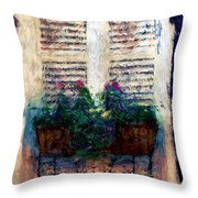 Window Box 2 Throw Pillow by Donna Bentley