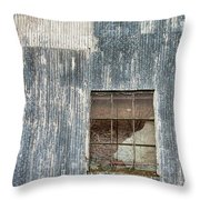 Window In Time 2 Throw Pillow