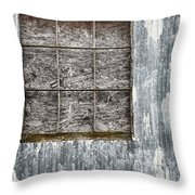 Window In Time 3 Throw Pillow
