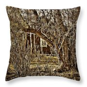 Window Of Roots Throw Pillow