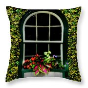 Window On An Ivy Covered Wall Throw Pillow