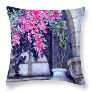 Window Shadow In Athens Greece Throw Pillow