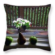 Window Sill 4 Throw Pillow