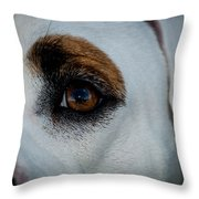 Window To A Soul Throw Pillow