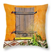 Window To Africa Throw Pillow