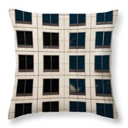 Window Washer Throw Pillow