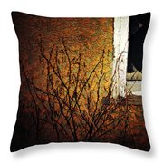 Windows Wink  Throw Pillow