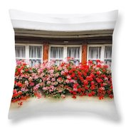 Windows With Red Flowers Throw Pillow