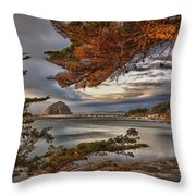 Windy Cove Throw Pillow