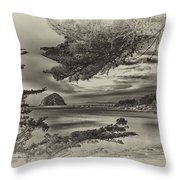 Windy Cove Bw Throw Pillow