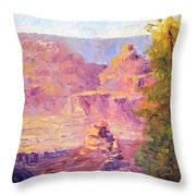 Windy Day In The Canyon Throw Pillow