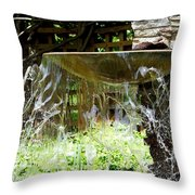 Windy Waterscape Throw Pillow