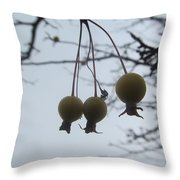Windy Yellow Holly Berry Two Throw Pillow