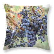 Wine Grapes In Provence Throw Pillow