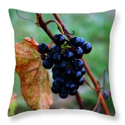 Wine In Time Throw Pillow
