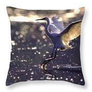 Wingdance Throw Pillow
