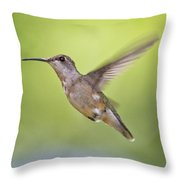 Winging It Throw Pillow