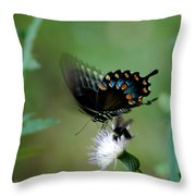 Wings In Motion Throw Pillow