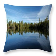 Wings In The Lake Throw Pillow