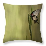 Wings Of The Heart Throw Pillow