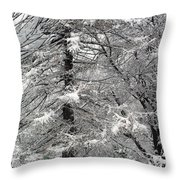 Winter 0001 Throw Pillow